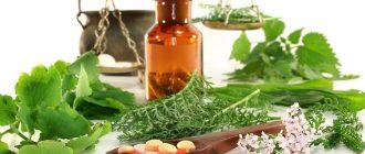 лечениеаденомы простаты народными средствами