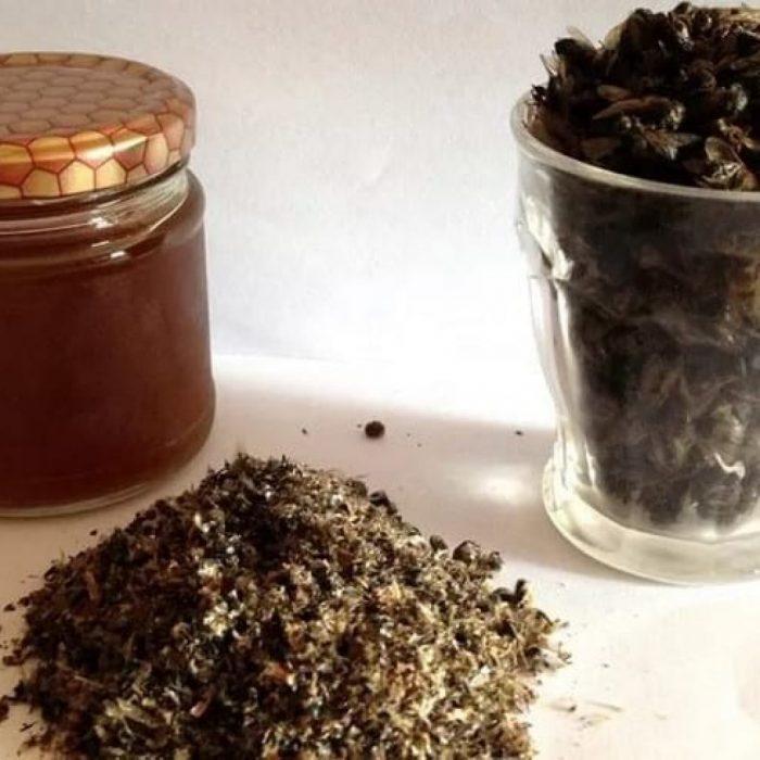 Лечение аденомы пчелиным подмором - действие, рецепты, отзывы