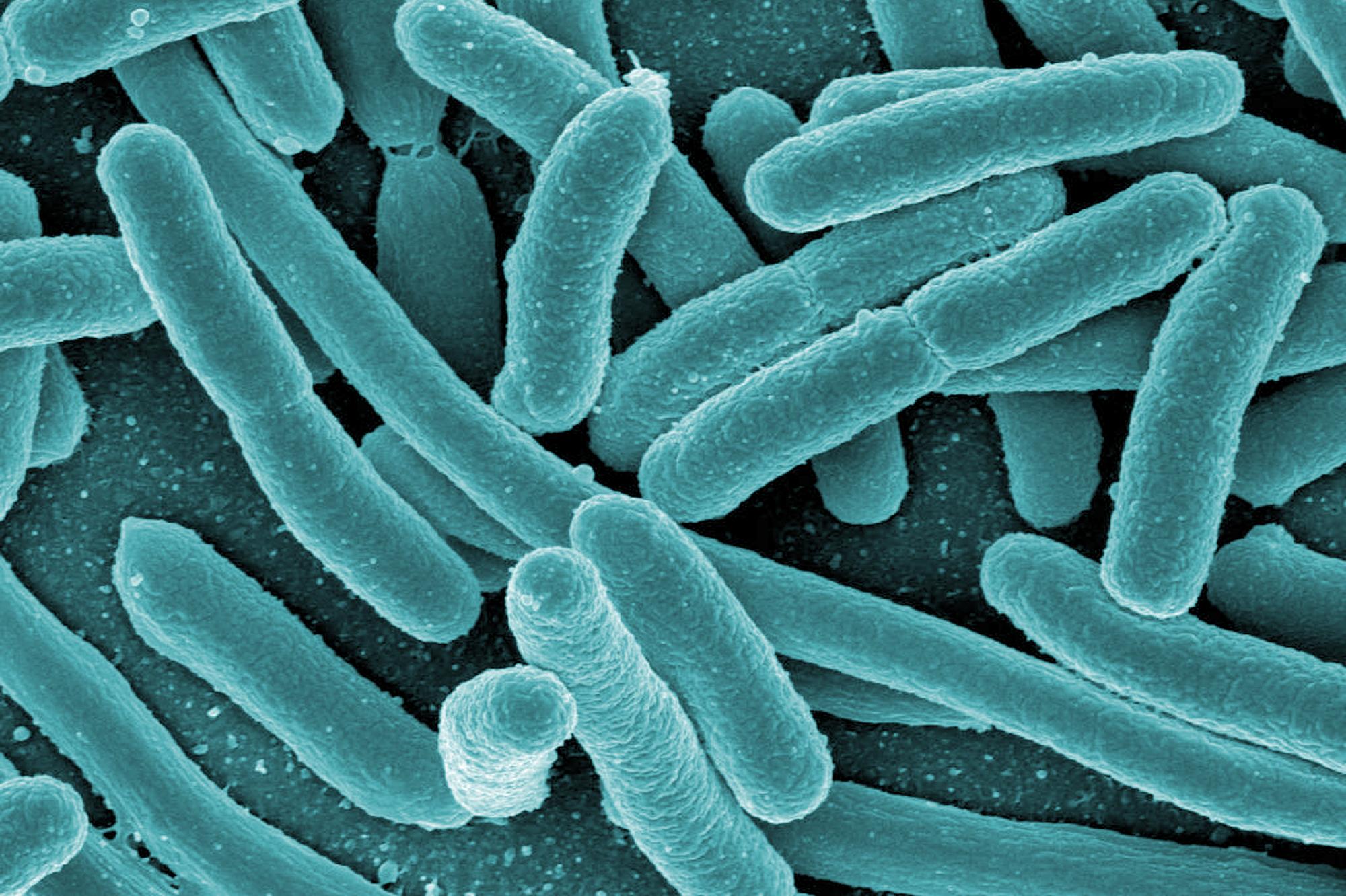 Половой акт при бактериальном простатите