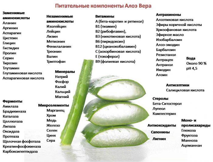 состав сока растения