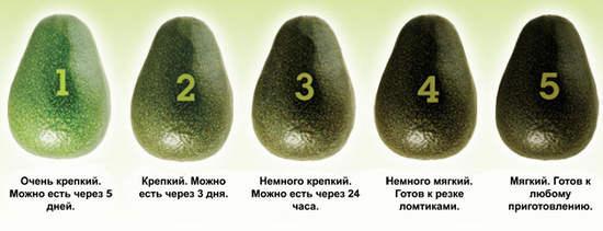 как выбрать фрукт