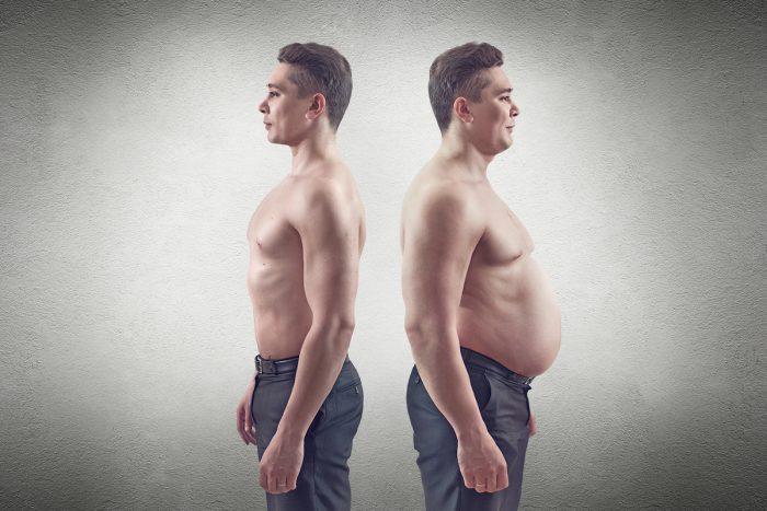 соотношение мышечной и жировой ткани