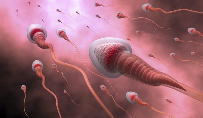 астенотератозооспермия у мужчин