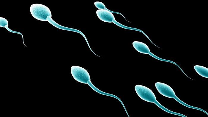 нарушения подвижности сперматозоидов