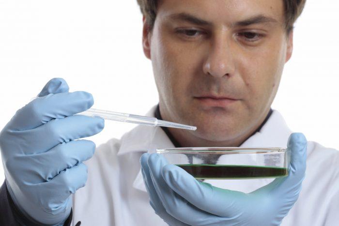 Как берут мазок на флору из уретры у мужчин и и расшифровка анализа