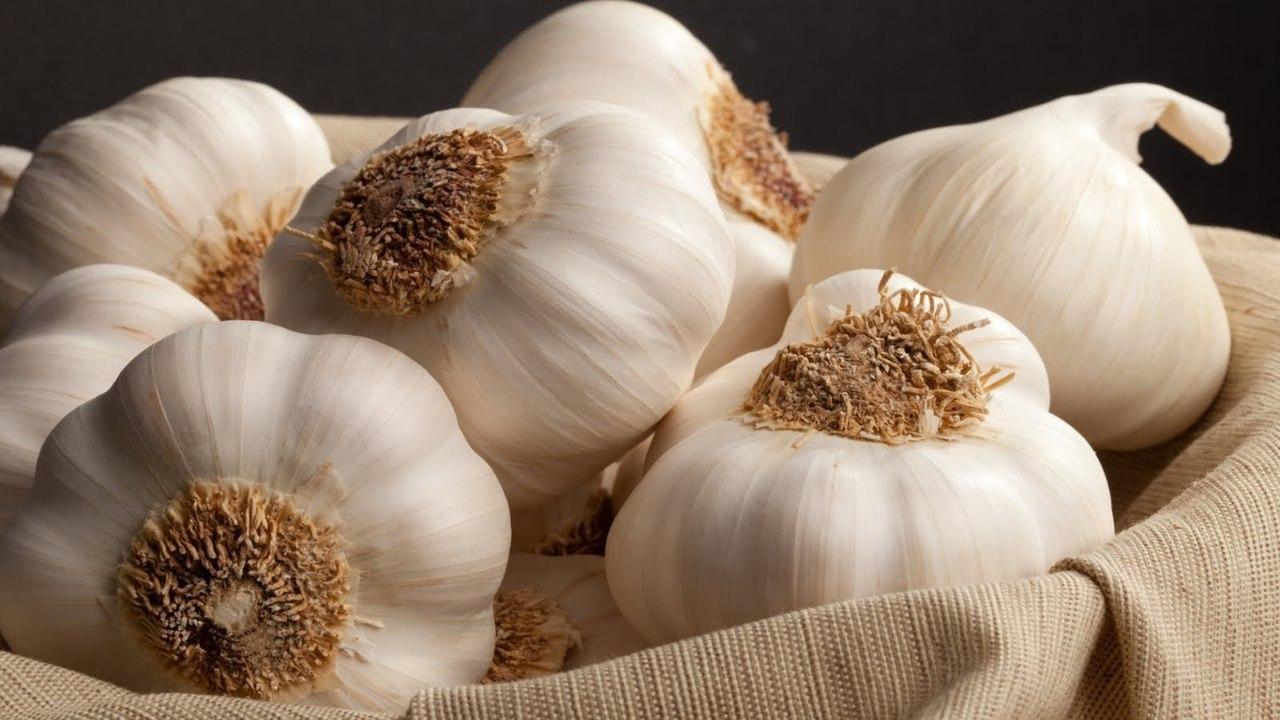 Польза чеснока для потенции - рецепты настоек, как избежать запаха