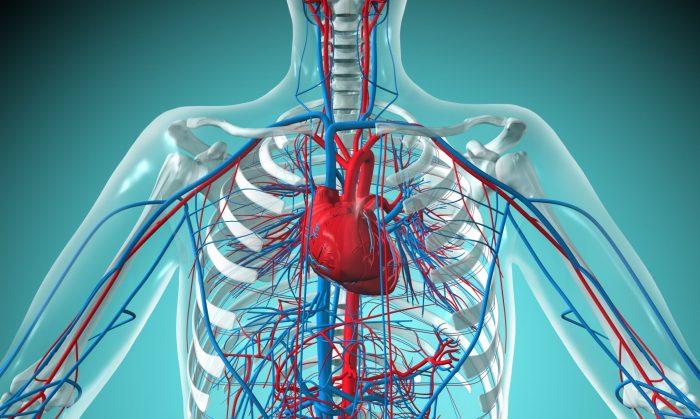 проблемы с сердечно-сосудистой системой