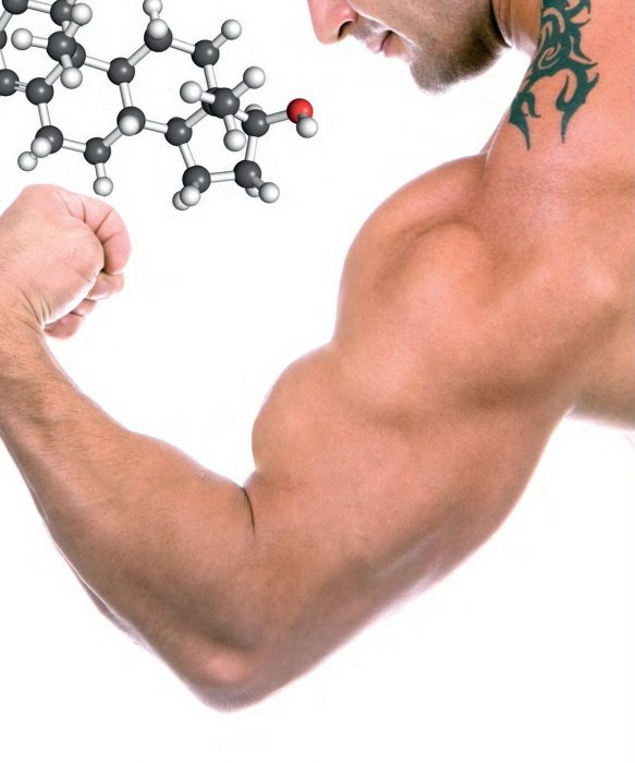 глобулин, связывающий половые гормоны